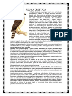 ÁGUILA CRESTADA