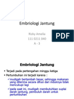 1.Embriologi Jantung