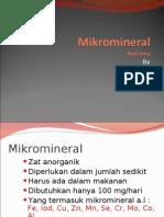 Mikromineral Boikimia  2009
