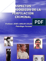 ASPECTOS METODOÓGICOS DE LA PERFILACIÓN CRIMINAL