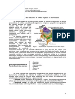 Protocolo 1 - 2012-13
