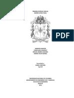 Proyecto de Diseño Estructural - Final.docx