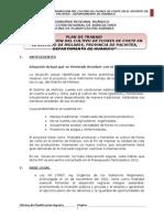 Plan de Trabajo  de Instalación de Flores  en el Distrito de Molinos