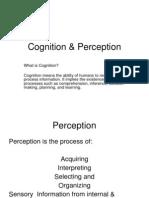 Cognition & Perception (1)