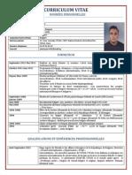 Curriculum Vitae-France (1)