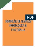 LP_7modificari adaptative si morfologice si functionale