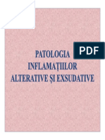 patologia inflamatiilor alterative si exsudative