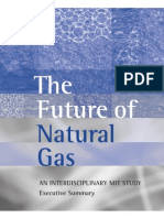 NaturalGas ExecutiveSummary (MIT)
