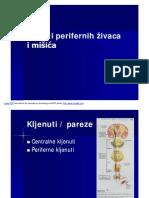 Periferni živčani sustav i mišićne bolesti