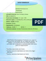 Proyecto Empresa