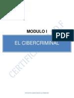 El Cibercriminal