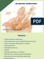 Medicina Tradicional SESION 3 PG