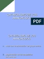 Catabolismo de Los Aminoacidos