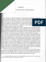 RIFKIN JEREMY CAP.9.pdf