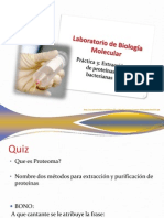 3- Extracción de Proteínas bacterianas modificado