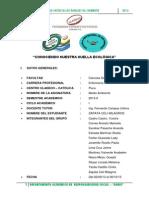 Milagros Zapata Enfermeria Etapa 01 Recojo de Informacion