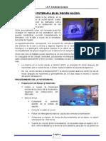 Uci Neonato Enfer Fototerapia