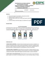 Informe 2 Ciclos