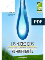 EstrategiasdeFertilizaciónenviddemesv- Juan Palma