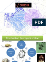 PPT Scabies