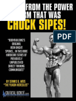 Chuck.sipes Echoesfinal