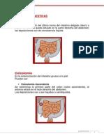 Tipos ostomias