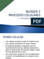 2.1 Metabolismo Celular