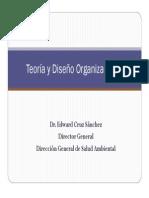 Teoría y Diseño Organizacional DE BASE