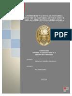 Formas de Corrosion Informe Final 2013-I