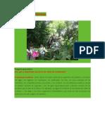Clases de Ecosistemas 6