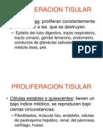 TPT05 - Reparación Tisular