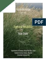 2011_19 Ingenieria Metabolica