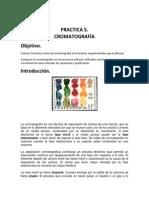 Cromatografia Reporte