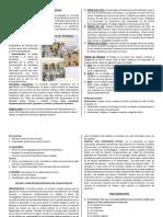 Organización Económica Inca (PRE)