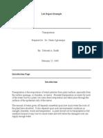 Lab Report Example