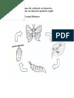 Planşe de colorat cu insecte