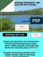 Wayan Sudja-BUdidaya Kerapu