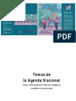 Cejis Temas de La Agenda Nacional