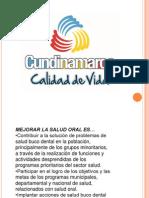 Salud Oral 2013