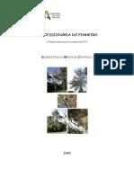 1246315082 Processionaria Areas Florestas 2009