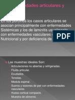 Enf. Articulares y Laminitis Cerdos