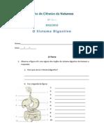 Ficha Do Sistema Digestivo