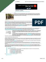 Ejercicio y Rendimiento Cognitivo PDF