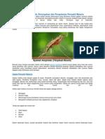 Gejala Malaria