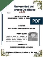 Proyecto Rebeca