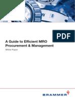 Brammer Efficient MRO Procurement Management