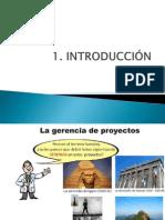 PMP-resumen.pptx