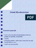 Curs 10 Mycobacterium (Modif)