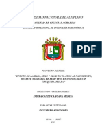 Proyecto Indira.docx