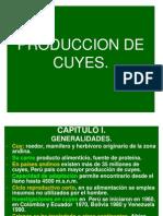 p.cuyes 05-Cap. i, II, III, IV y v-cambios